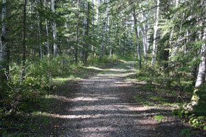 Photo of Nature Trail